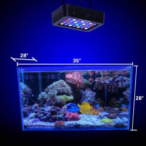 Wattshine 180W LED Coral Light,Large Angle Dimmable Reef Light